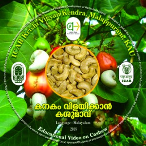 CD TOP LABEL Cashew Malayalam for KVK