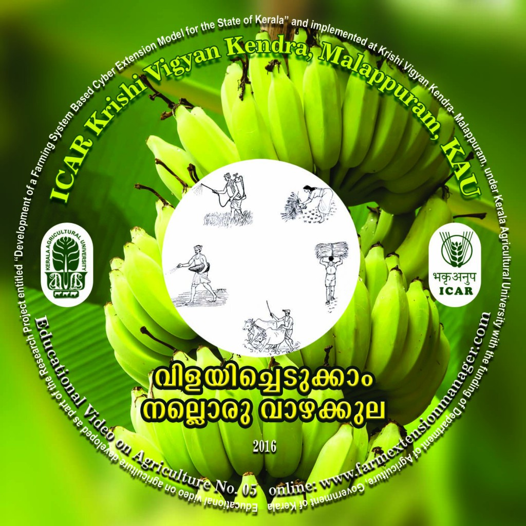 CD TOP LABEL banana copy