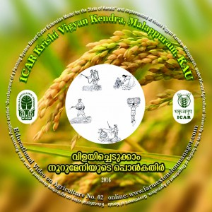 CD TOP LABEL paddy copy