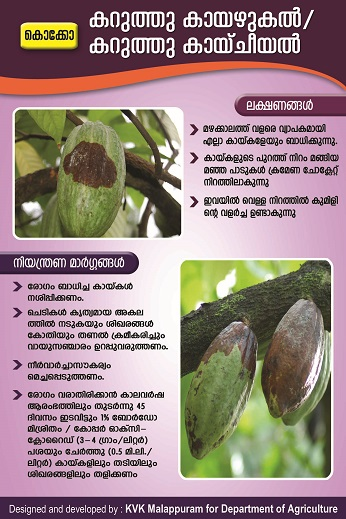Cocoa fruit rot poster copy_1