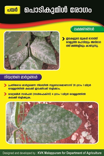 Cowpea powdery mildew poster copy