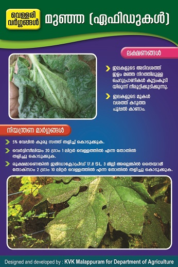Cucubit Aphids Poster copy