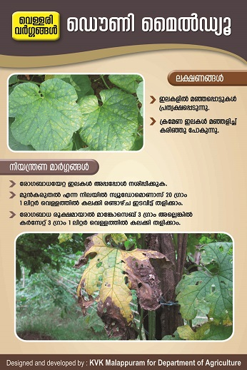 Downy Mildew Poster copy