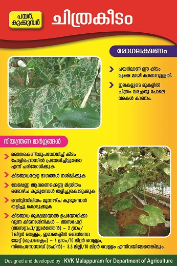 Polyhouse leaf miner poster copy